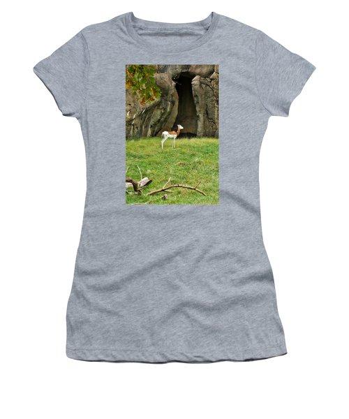 Women's T-Shirt (Junior Cut) featuring the photograph Young Addra Gazelle by Jean Goodwin Brooks