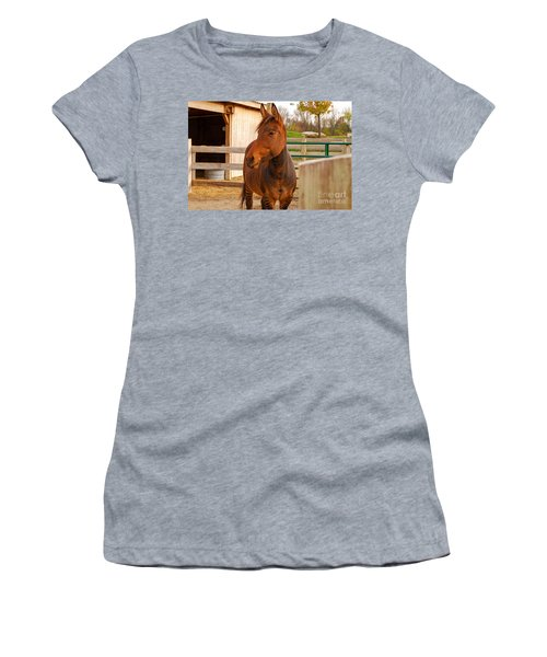 Zorse Women's T-Shirt (Athletic Fit)