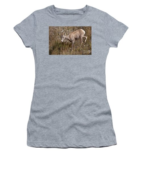 Bighorn Ewe Women's T-Shirt (Athletic Fit)