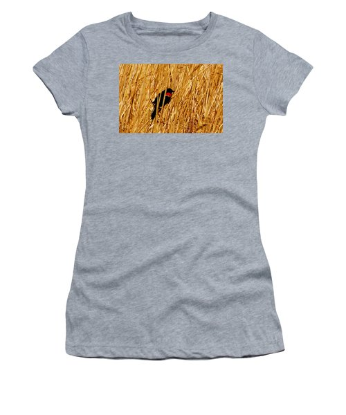 Blackbird In The Reeds Women's T-Shirt (Athletic Fit)