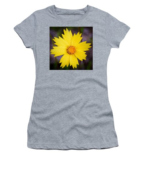 A Little Sunshine Women's T-Shirt