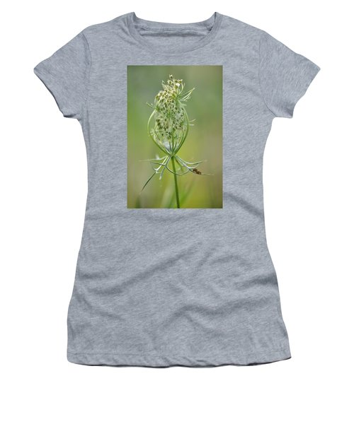 Women's T-Shirt (Junior Cut) featuring the photograph A Meal Of Lace by JD Grimes