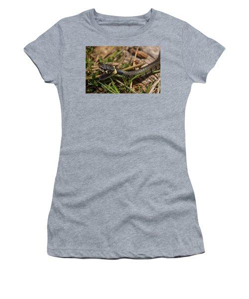 British Grass Snake Women's T-Shirt