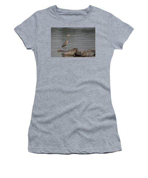 Women's T-Shirt (Junior Cut) featuring the photograph Cautious by Eunice Gibb