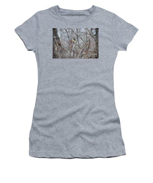 Cedar Wax Wing 3 Women's T-Shirt (Junior Cut) by David Arment