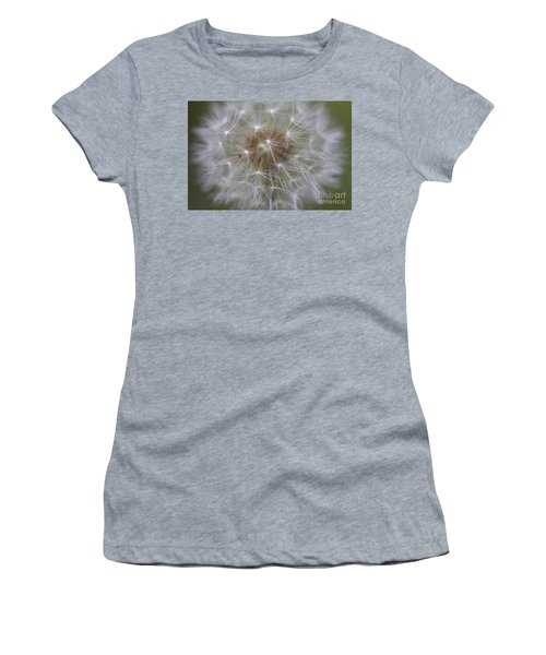 Dandelion Clock. Women's T-Shirt