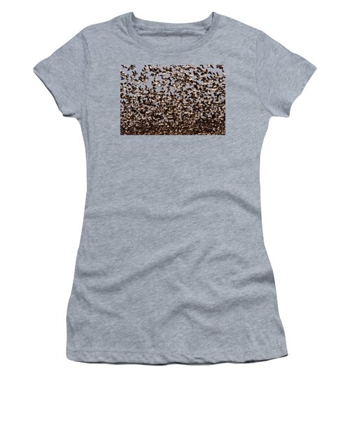 Duck Wall Women's T-Shirt