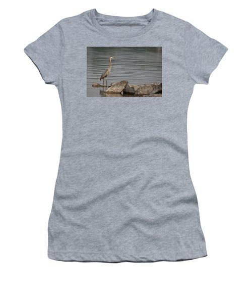 Women's T-Shirt (Junior Cut) featuring the photograph Ever Alert by Eunice Gibb