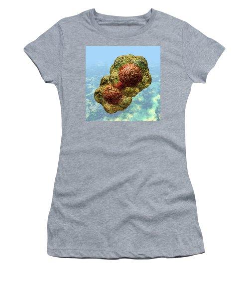 Geminivirus Particle Women's T-Shirt