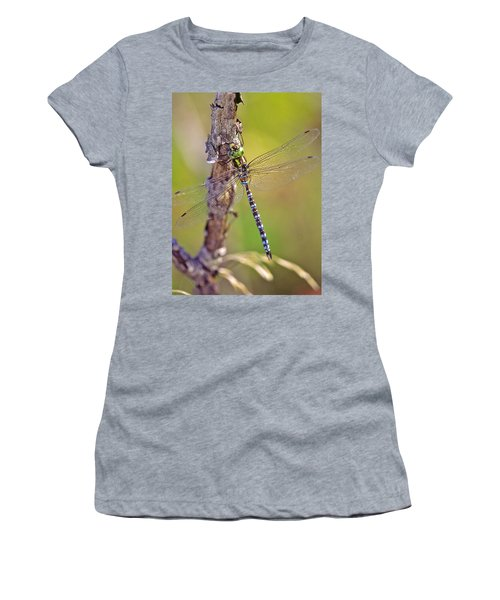 Green-striped Darner Dragonfly Women's T-Shirt (Athletic Fit)