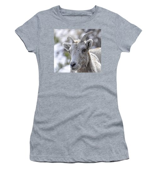 How Close Is Too Close Women's T-Shirt (Junior Cut) by Dorrene BrownButterfield
