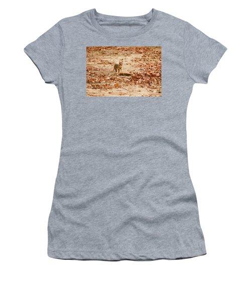 Women's T-Shirt (Junior Cut) featuring the photograph Jackal Standing Over Deer Kill by Fotosas Photography