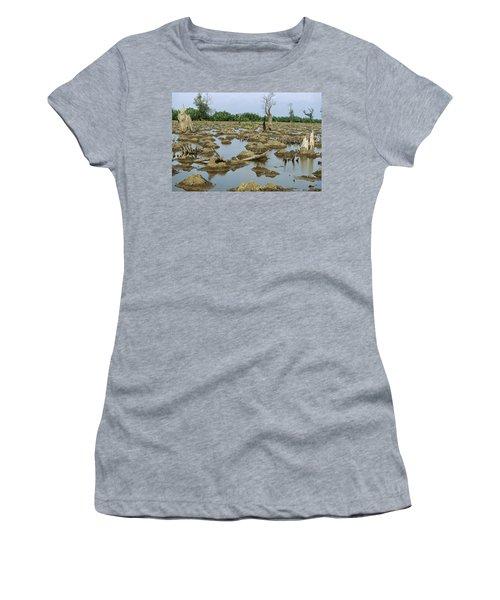 Mangrove In Mahakam Delta 80% Destroyed Women's T-Shirt