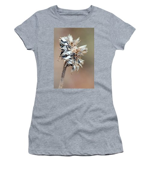 1 Women's T-Shirt (Athletic Fit)