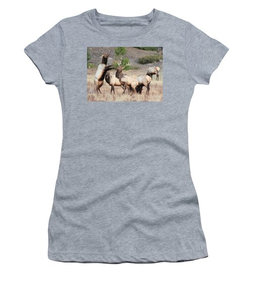 Put Up Your Dukes Women's T-Shirt