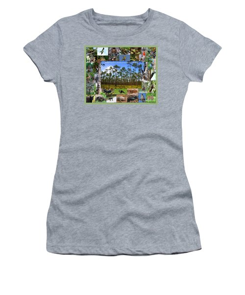 Southeastern Pine Forest Wildlife Poster Women's T-Shirt (Athletic Fit)