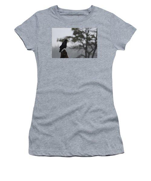 Women's T-Shirt (Junior Cut) featuring the photograph The Bachelor by Cathie Douglas