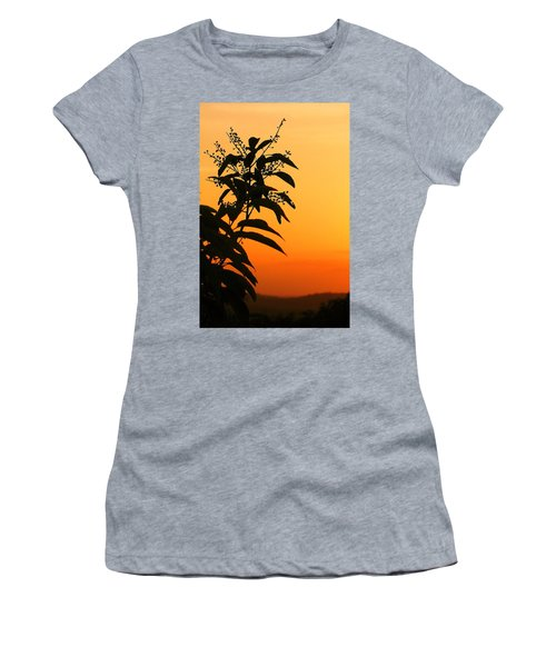 Whipple Hill Women's T-Shirt (Athletic Fit)