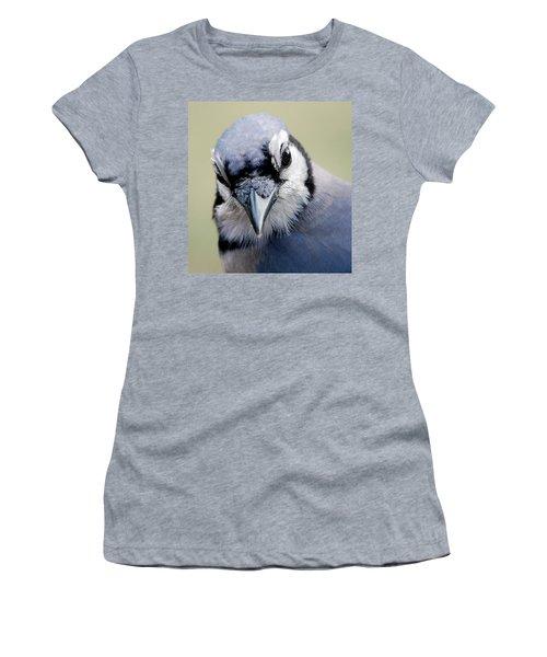 Blue Jay Women's T-Shirt