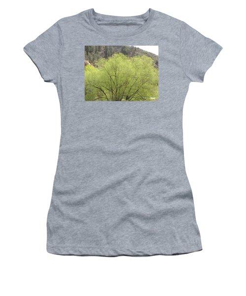 Tree Ute Pass Hwy 24 Cos Co Women's T-Shirt