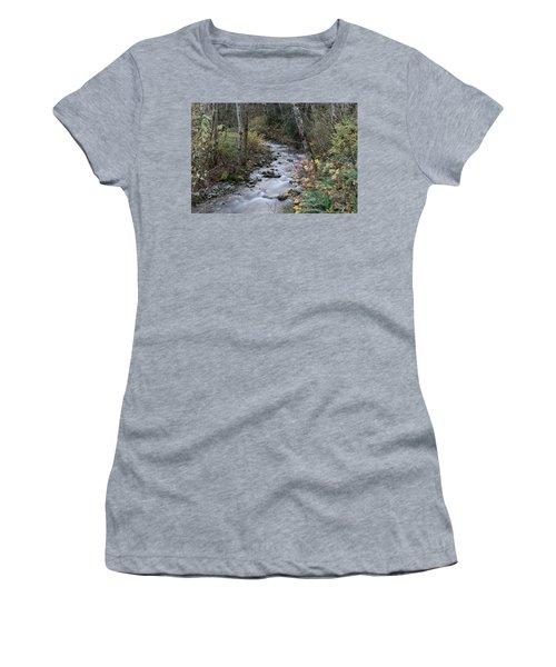 Women's T-Shirt (Junior Cut) featuring the photograph An Autumn Stream by Jeff Swan