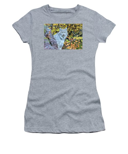 Canada Lynx Women's T-Shirt (Junior Cut) by Jack Bell