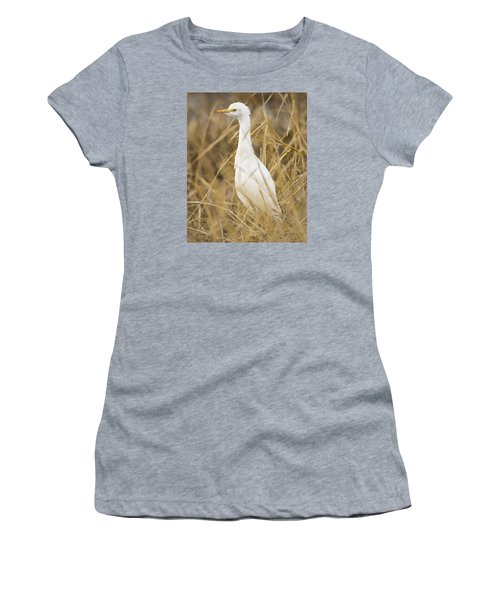 Cattle Egret Women's T-Shirt (Junior Cut)