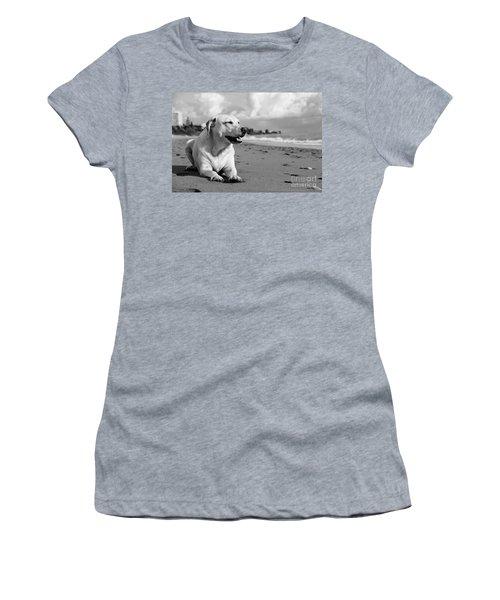 Dog - Monochrome 5  Women's T-Shirt