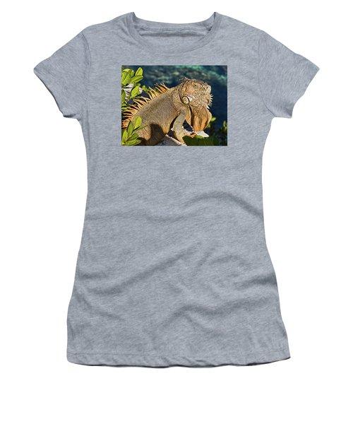 Giant Iguana Women's T-Shirt
