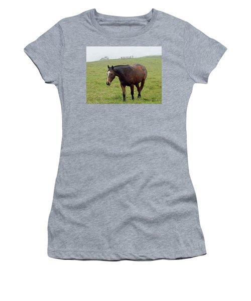 Horse In The Fog Women's T-Shirt (Junior Cut) by Pamela Walton