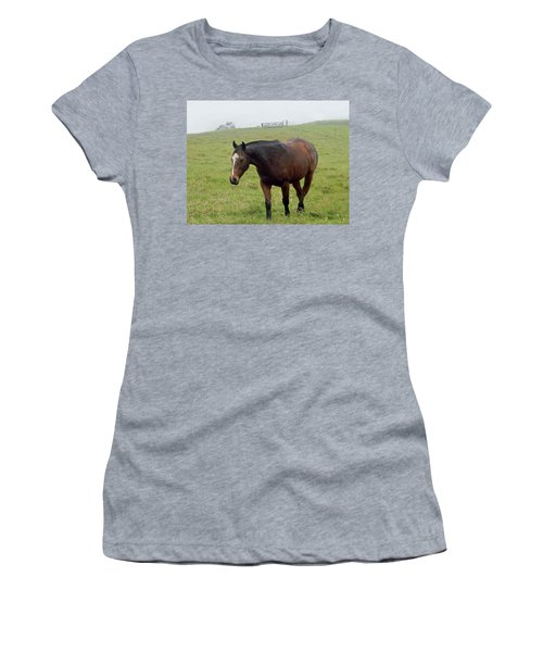 Horse In The Fog Women's T-Shirt