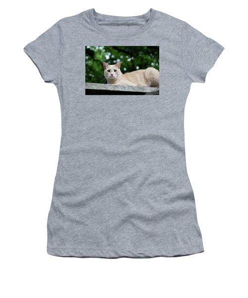 Orange Tabby Women's T-Shirt (Athletic Fit)