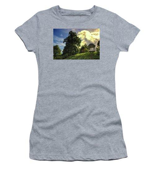 Petworth House Women's T-Shirt (Junior Cut) by Martin Newman