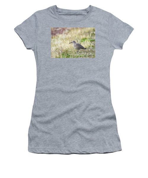 Women's T-Shirt featuring the photograph Willet by Michael Chatt