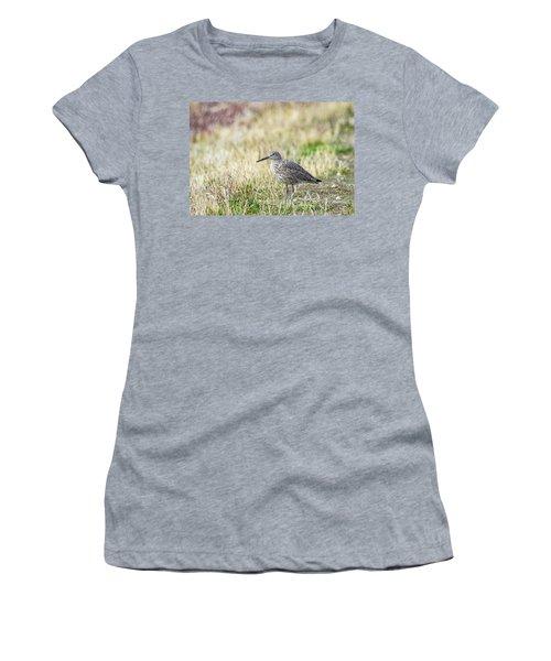 Willet Women's T-Shirt
