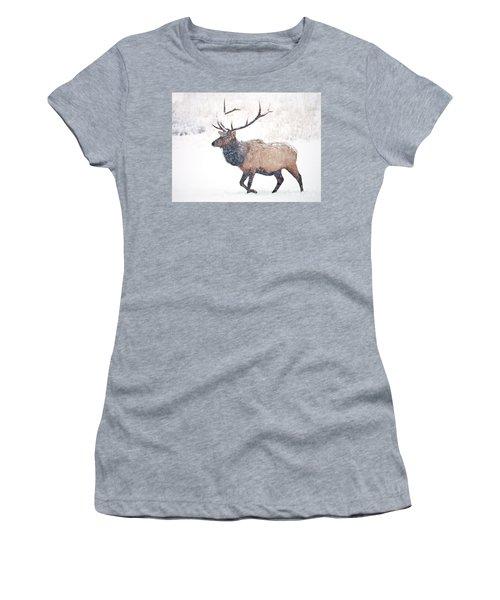 Women's T-Shirt (Junior Cut) featuring the photograph Winter Bull by Mike Dawson