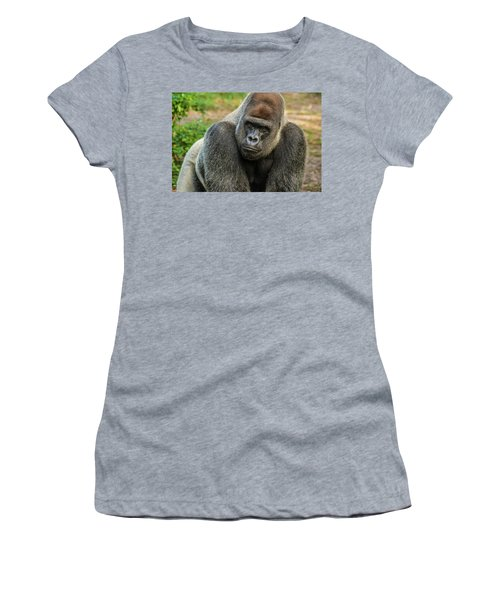 10898 Gorilla Women's T-Shirt (Junior Cut) by Pamela Williams
