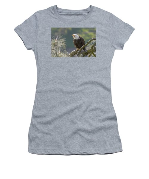 Women's T-Shirt (Junior Cut) featuring the photograph Bald Eagle by Doug Herr
