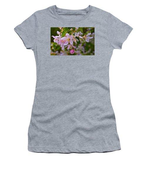 2015 Spring At The Gardens White Crabapple Blossoms 1 Women's T-Shirt