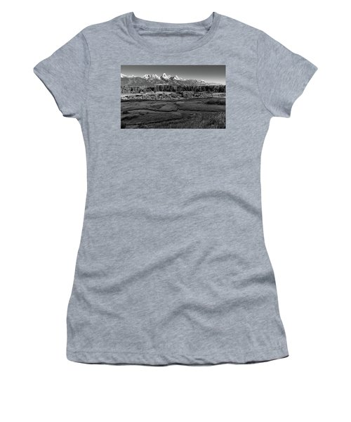 A Perfect Frosty Morning In Grey Scale Women's T-Shirt (Athletic Fit)
