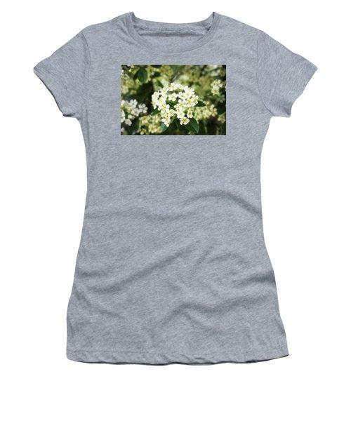 A Thousand Blossoms 3x2 Women's T-Shirt