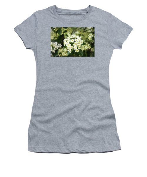 A Thousand Blossoms 3x2 Women's T-Shirt