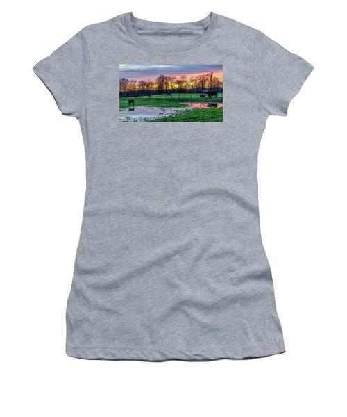 A Time For Reflection Women's T-Shirt (Junior Cut) by Jeffrey Friedkin