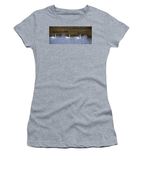 A Trio Of Swans Women's T-Shirt (Athletic Fit)