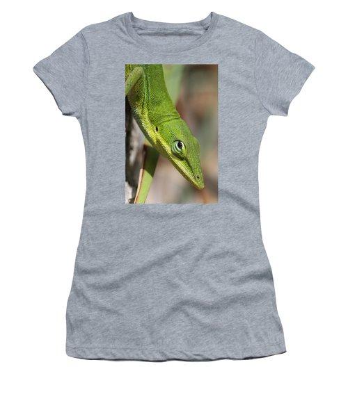 A Watchful Eye Women's T-Shirt (Junior Cut) by Doris Potter