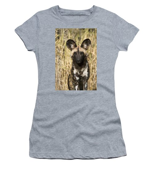 Women's T-Shirt featuring the photograph African Wild Dog Okavango Delta Botswana by Suzi Eszterhas