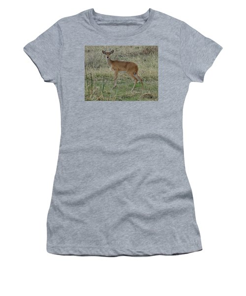 African Wildlife 1 Women's T-Shirt (Athletic Fit)