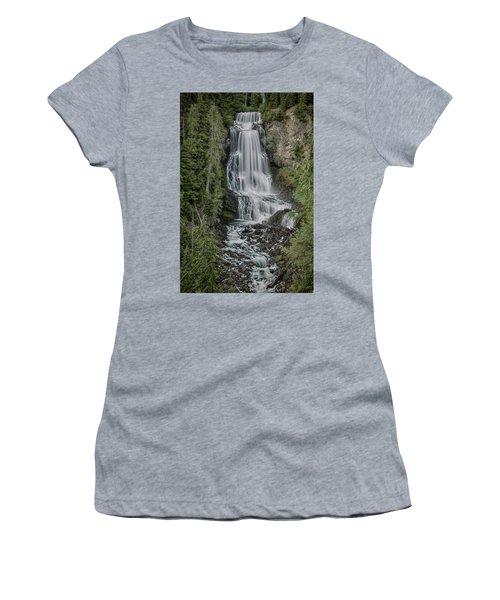 Women's T-Shirt (Junior Cut) featuring the photograph Alexander Falls by Stephen Stookey