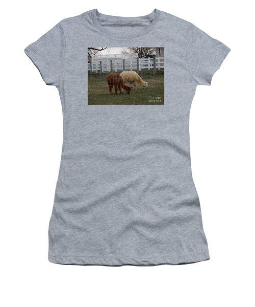 An Evening Graze Women's T-Shirt