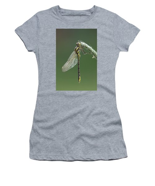 Ashy Or Dusky Clubtail Women's T-Shirt (Athletic Fit)